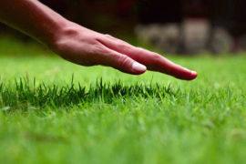 Aerifikace trávníku